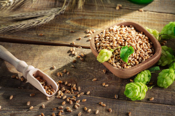 Ingredients for fresh beer laying on wooden plank. stock photo