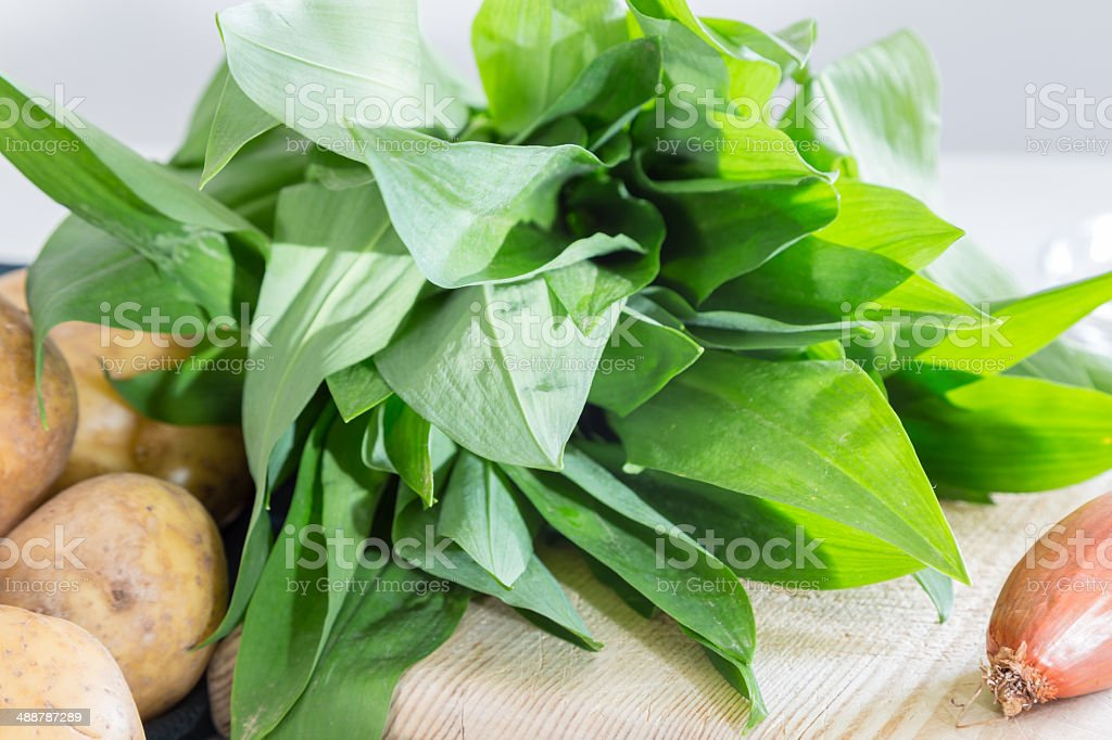 Ingredients for gnocchi with wild garlic stock photo