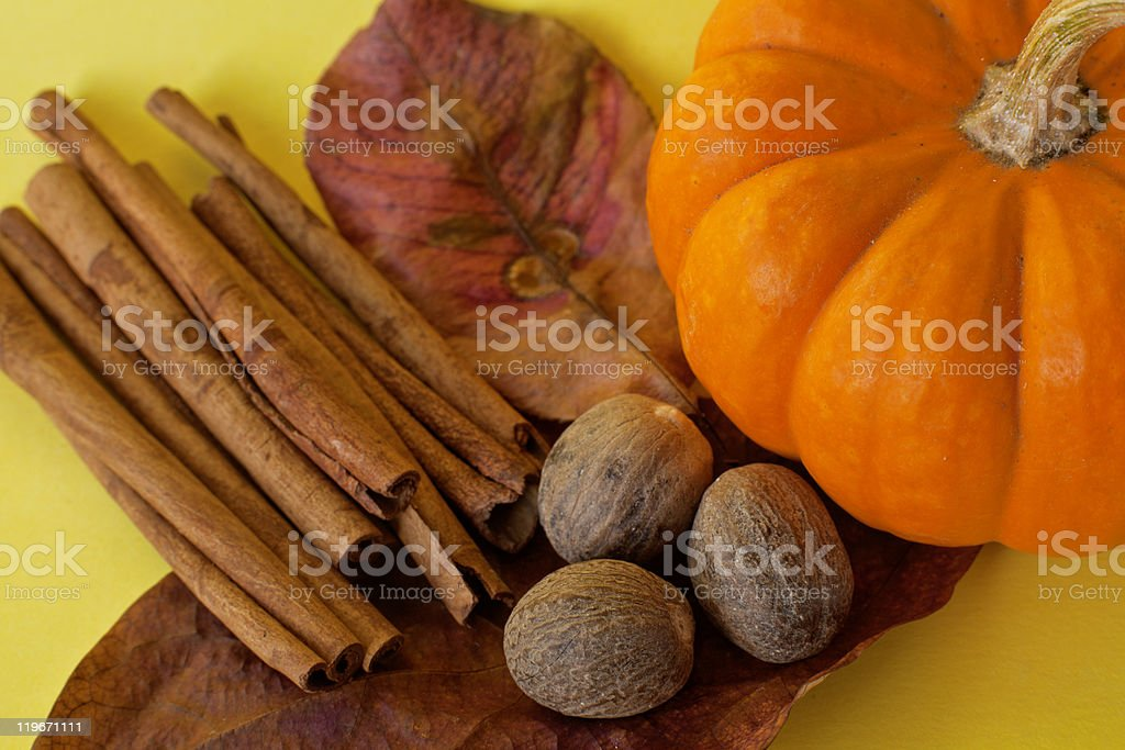 Ingredients for making pumpkin spice Autumn with pumpkins and cinnamon and nutmeg Autumn Stock Photo