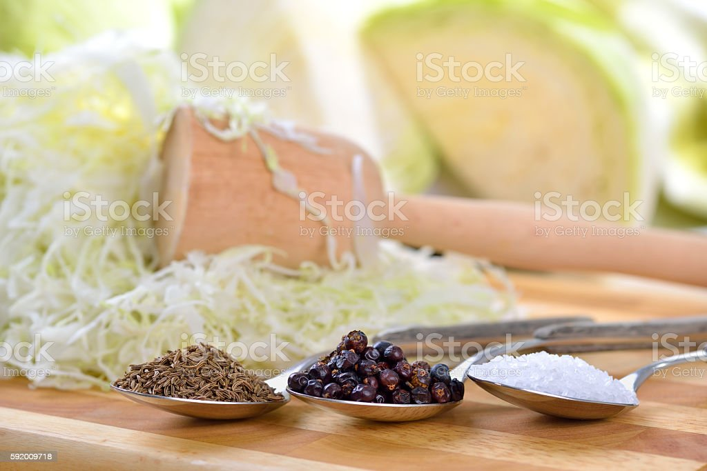 Ingredients for sauerkraut - foto de stock