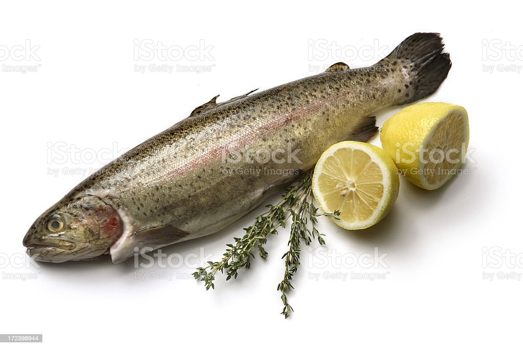 Ingredients: Trout royalty-free stock photo