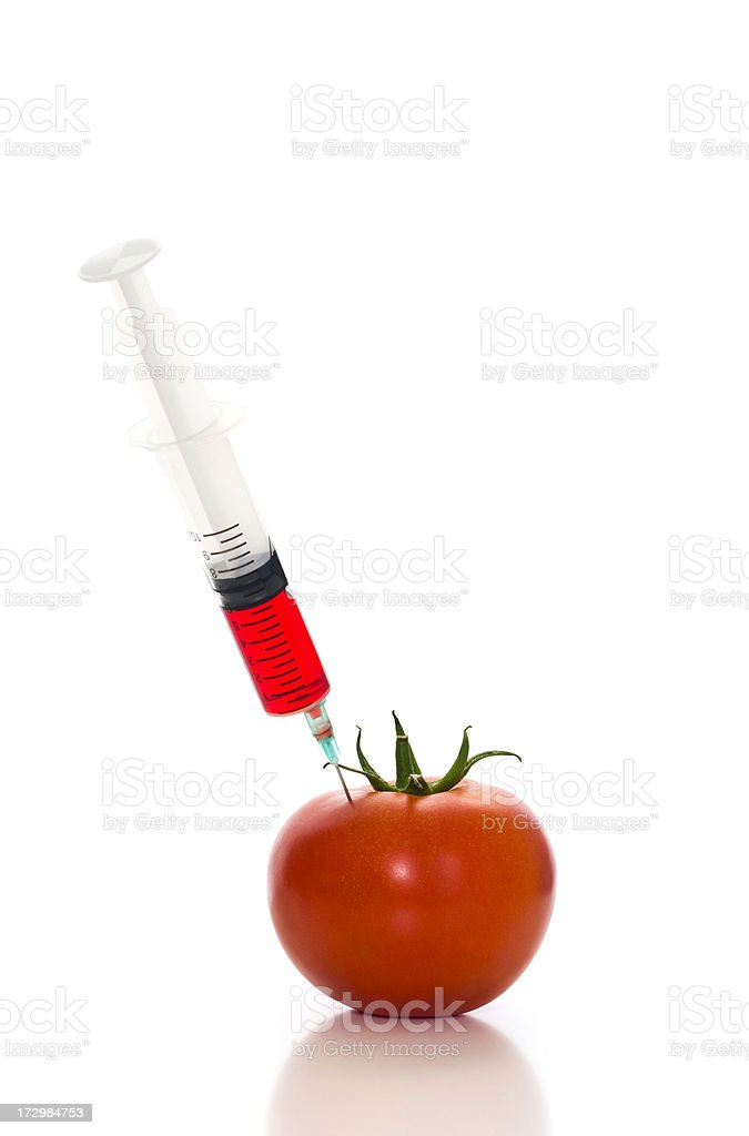 Injecting red liquid in tomato royalty-free stock photo