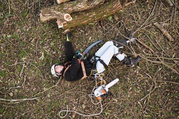 injured lumberjack with chainsaw lying on the ground after fall - tree surgeon stock photos and pictures