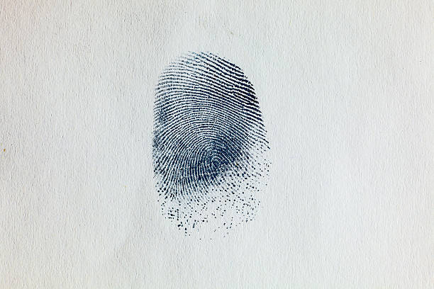 ink fingerprint on paper 03 - fingerprint stock photos and pictures