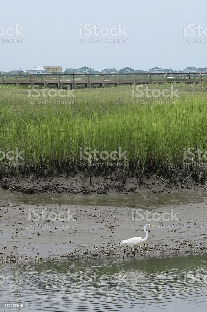 Inlet Scene royalty-free stock photo