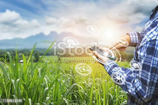 istock Innovation technology for smart farm system, Agriculture management, 1158613345