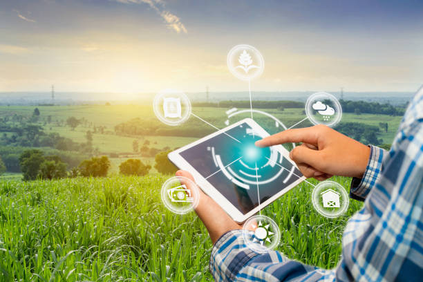 Innovation technology for smart farm system, Agriculture management, stock photo