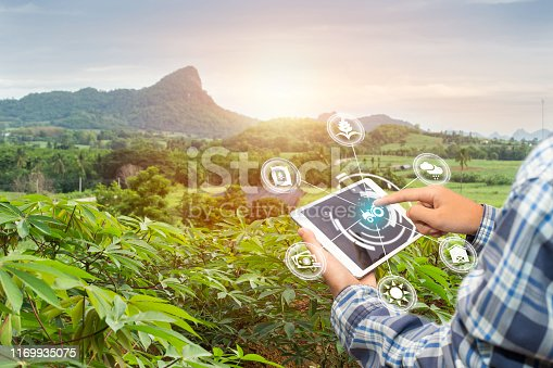 istock Innovation technology for smart farm system, Agriculture management, Hand holding smartphone with smart technology concept. 1169935075