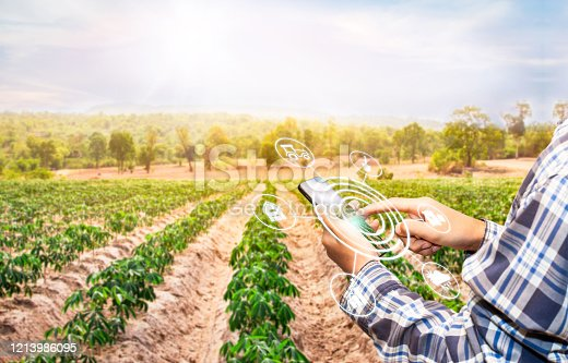 510149992 istock photo Innovation technology for smart farm system, Agriculture management, Hand holding smartphone with smart technology concept. 1213986095