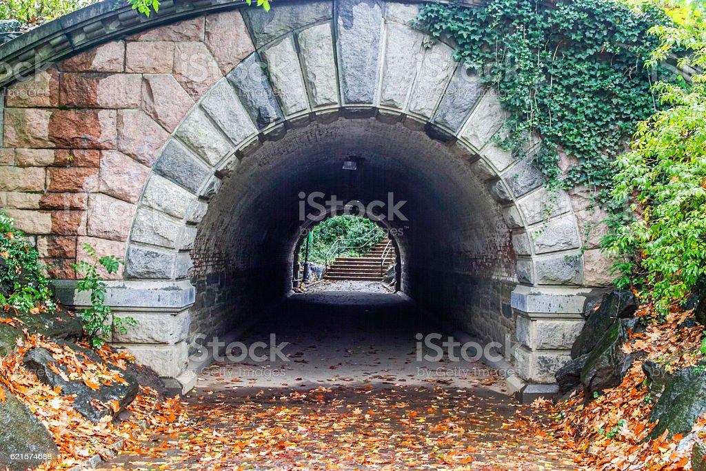 Inscope tunnel Central Park, New York City photo libre de droits