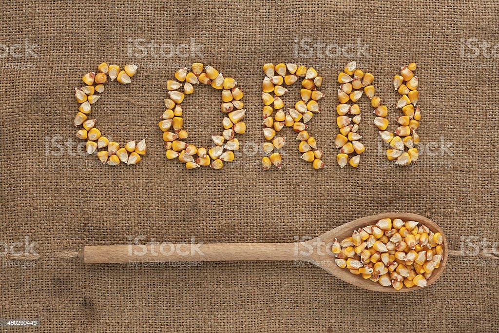 Inscription corn with a wooden spoon on burlap stock photo