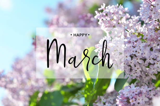 inscription happy march. lilac flower. spring background. - welcome march stock photos and pictures