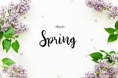 istock Inscription Hello Spring. Lilac flowers on white background. Spring flowers. Top view, flat lay. - Image 1204229219