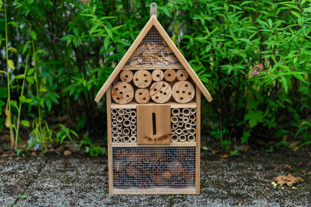 Insect Hotel, Bug Hotel oder Insect House, Bee Hotel – Foto