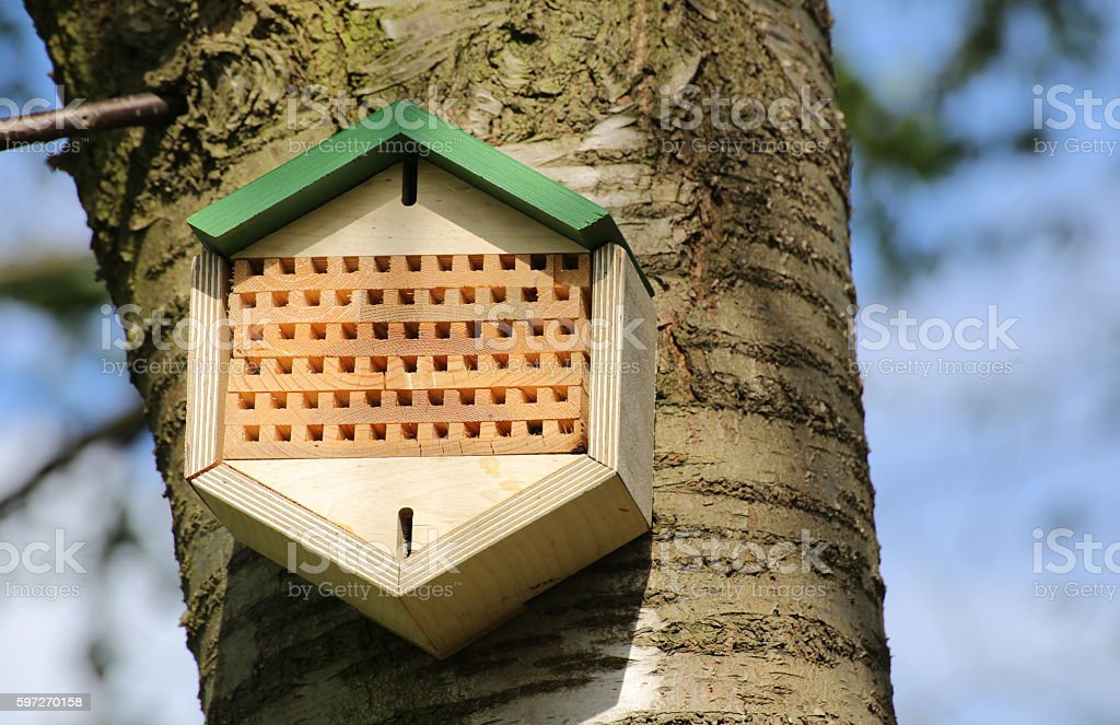 Insect hotel installed on an apple tree royalty-free stock photo
