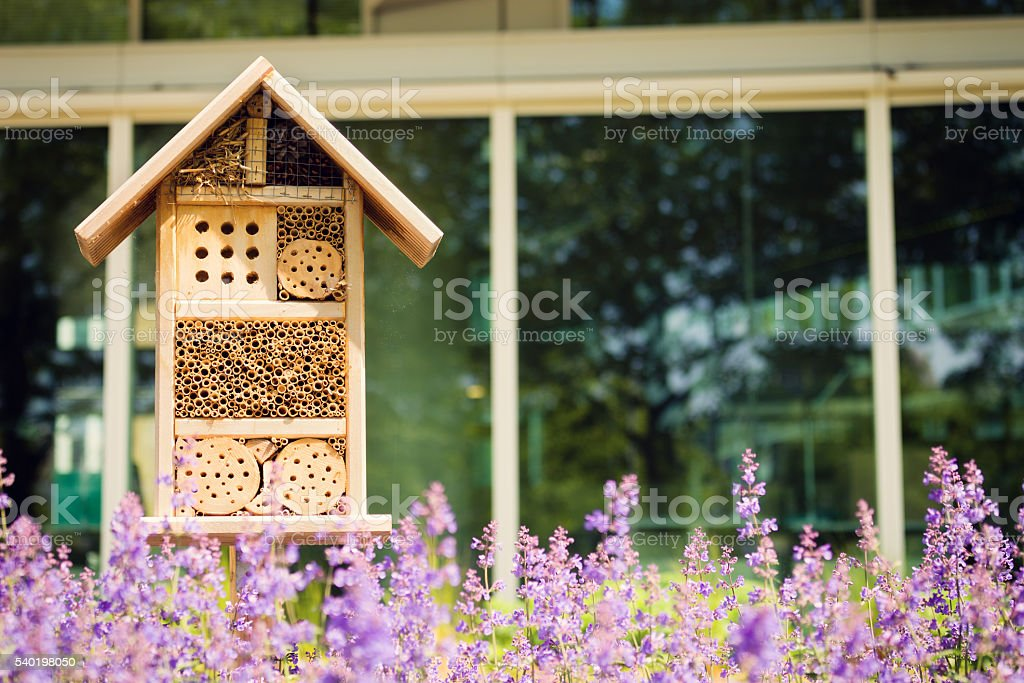 Insect hotel or house in a city environment stock photo