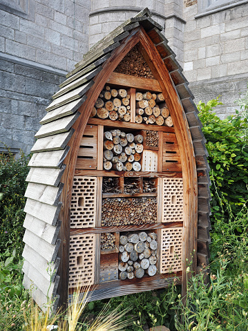 Insect hotel in front of a church