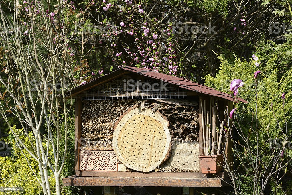 Insect hotel royalty-free stock photo