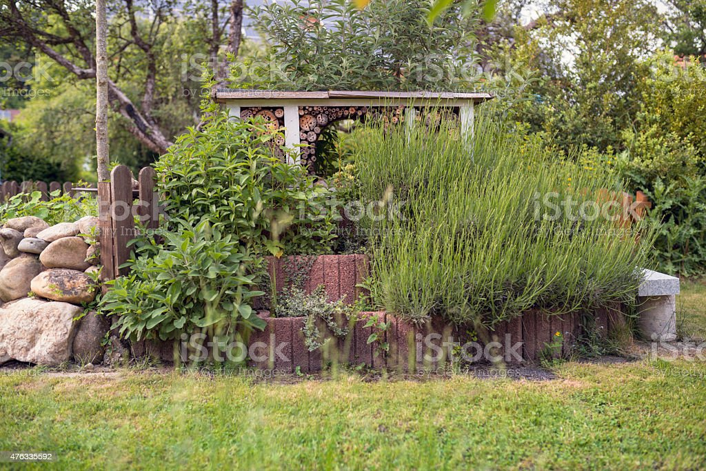 Insect hotel in an herb garden. Various types of mint and lavender.