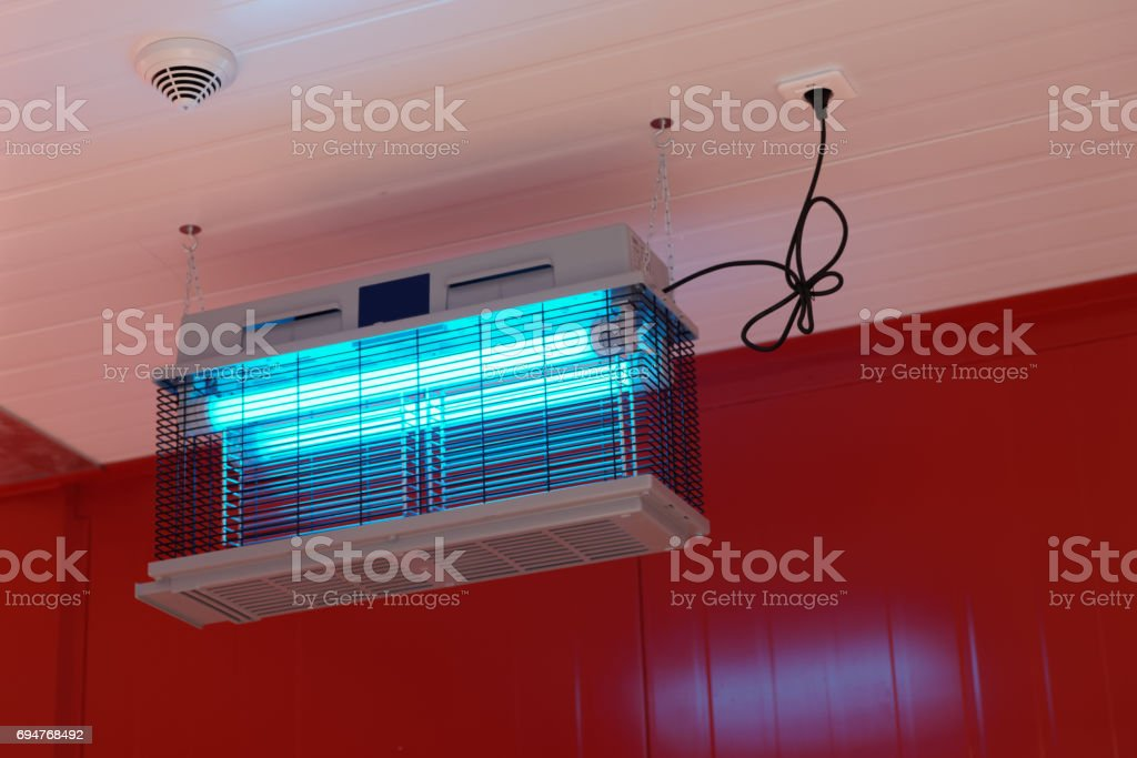 Insecticide lamp used to lure and kill flying insects stock photo