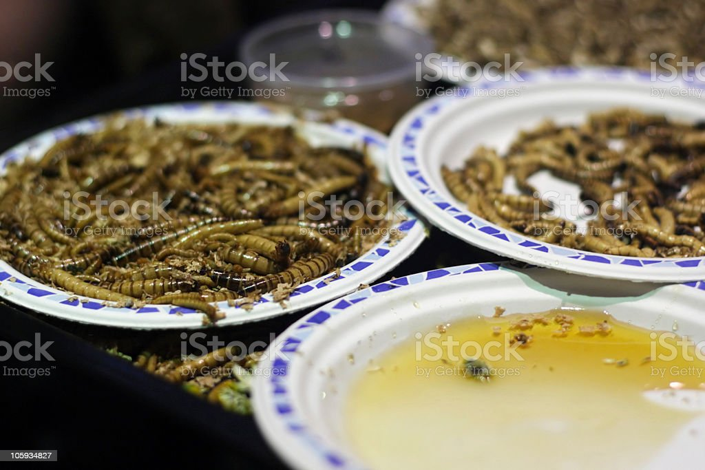 Insects as food royalty-free stock photo