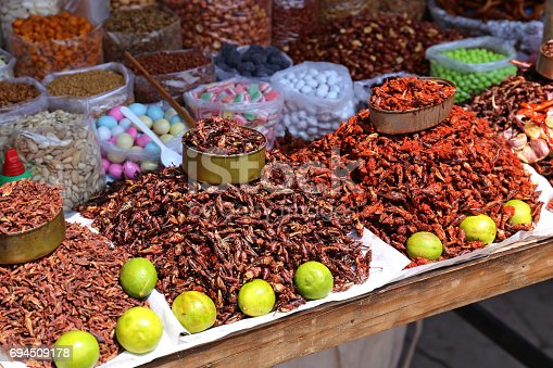 istock Insects Food in Mexico 694509178