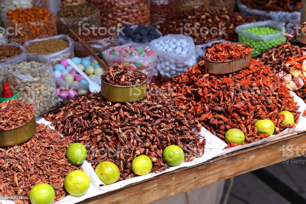 Insects Food in Mexico stock photo