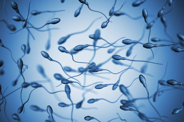 Insemination Genetics background. 3D Render sperm stock pictures, royalty-free photos & images