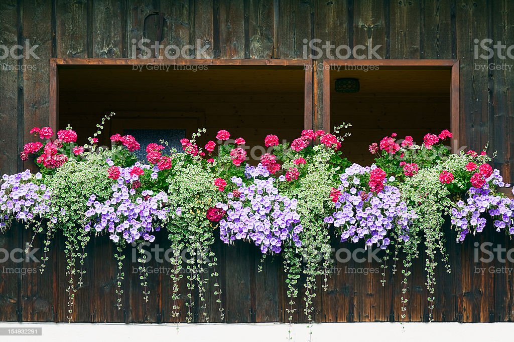 Inside balcony decorated with crane's bill and petunias stock photo