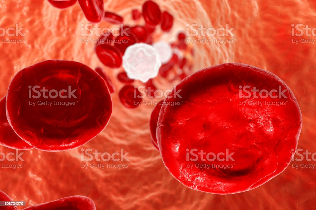 Inside blood vessel stock photo