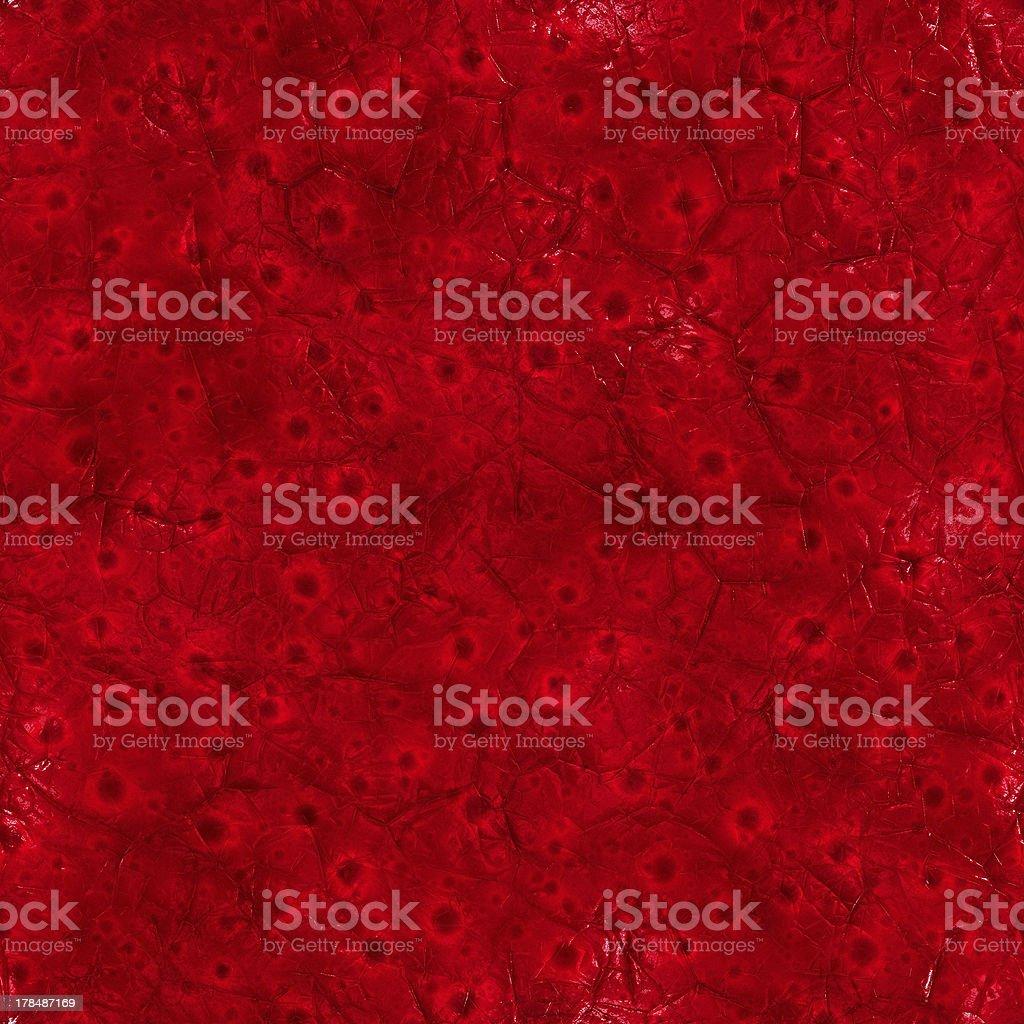 Inside body (Seamless texture) stock photo