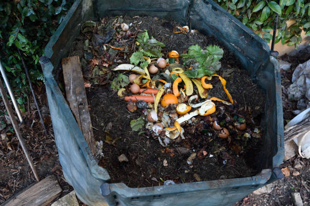 inside of a composting container - bin stock pictures, royalty-free photos & images