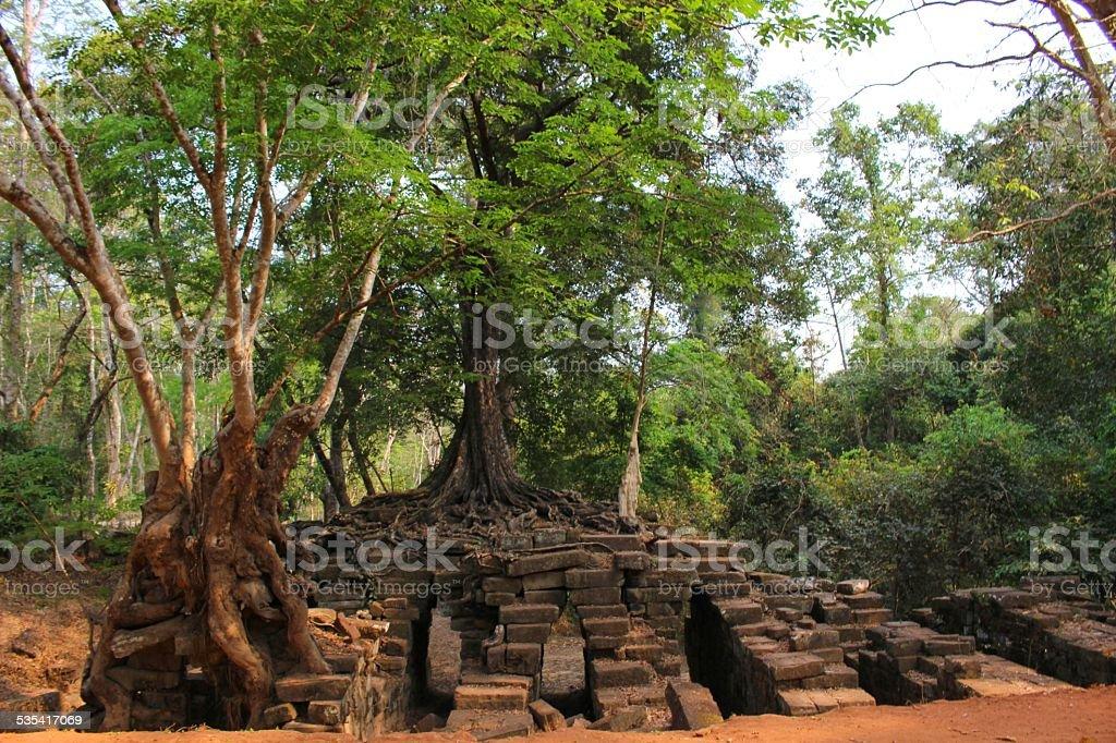Inside of Angkor Wat stock photo