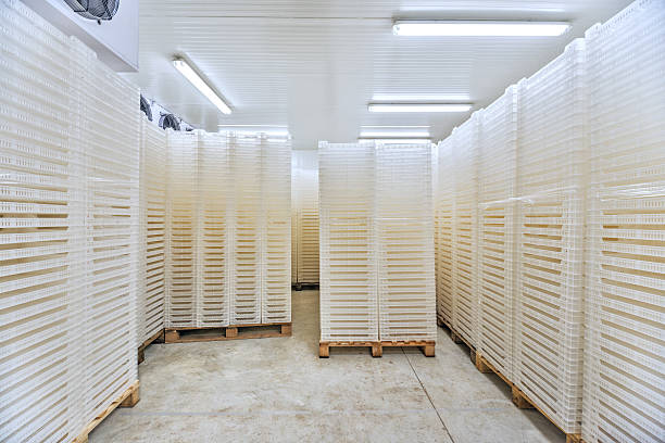 in der großen industrie- kühlschrank und stauraum bei -30° celsius - kühlraum stock-fotos und bilder