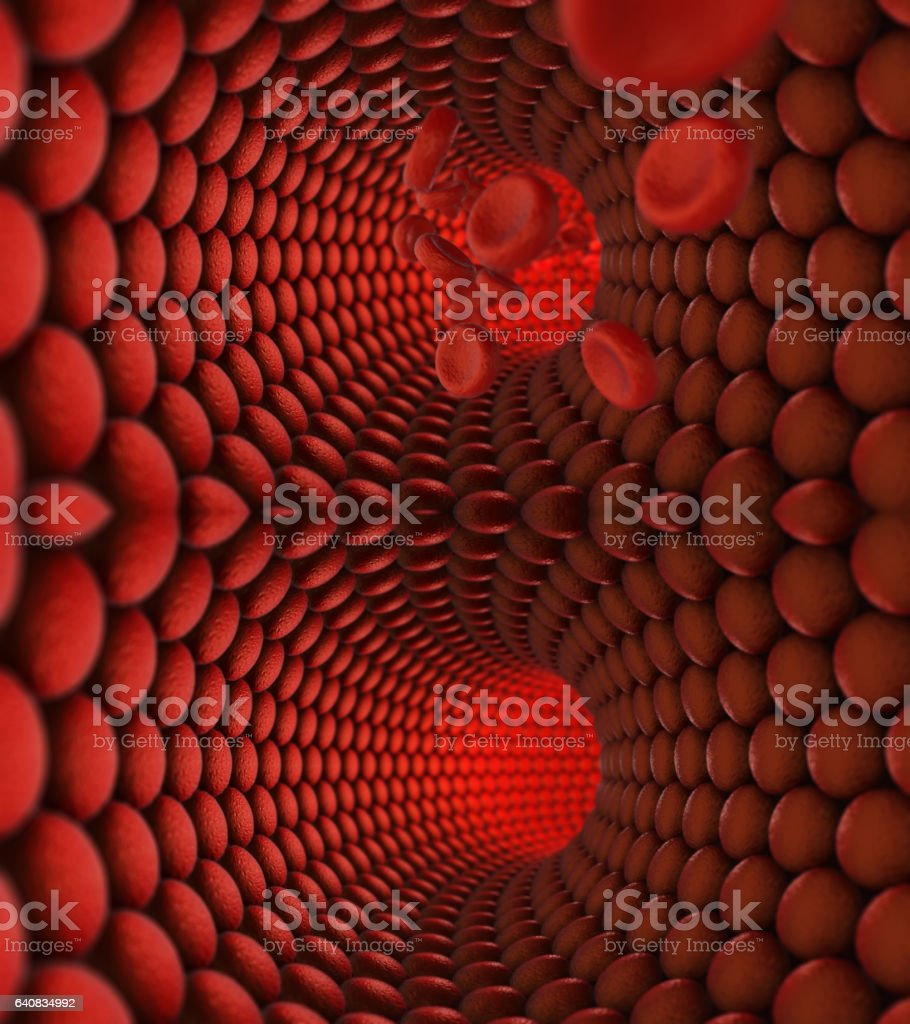 Inside of human vein stock photo