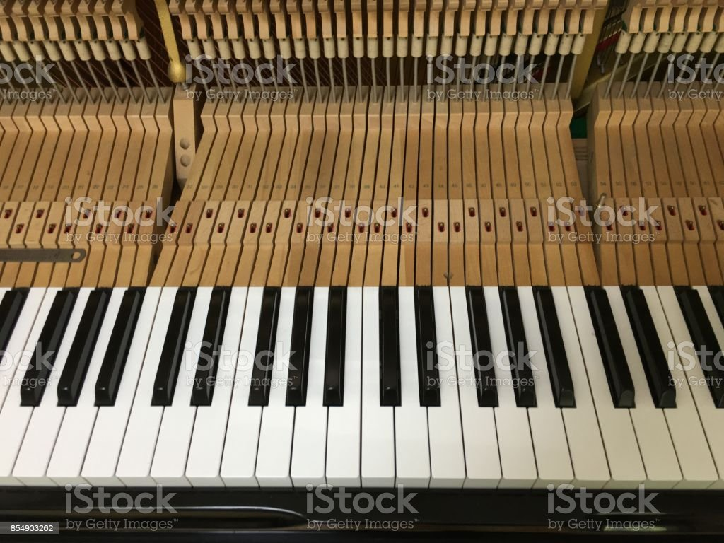 Inside of the piano. stock photo