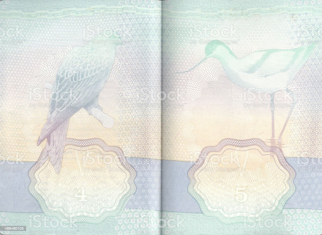 Inside Pages Of UK Passport stock photo