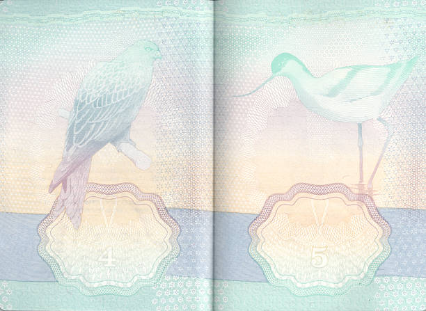 En las páginas de pasaportes del Reino Unido - foto de stock