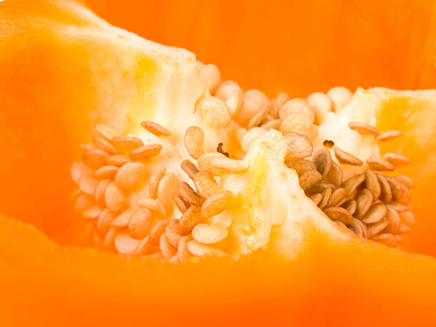 inside paprika - xxmmxx stock photos and pictures
