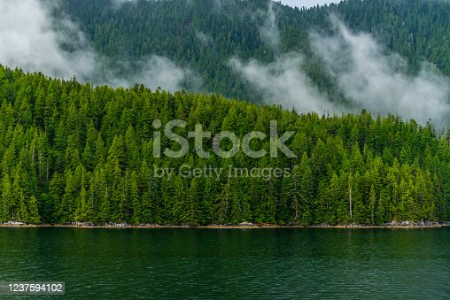 istock inside passage, vancouver island, BC, canada 1237594102