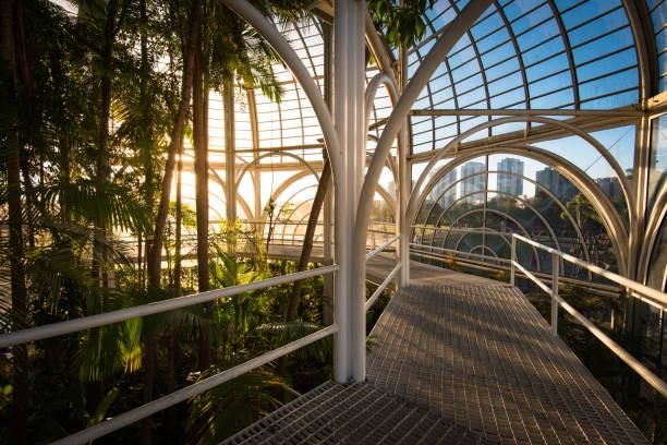 Inside the Botanical Garden of Curitiba stock photo