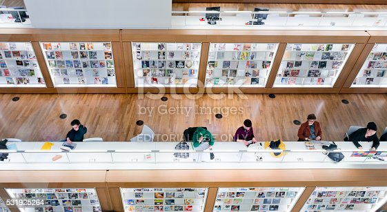 istock Inside the Public Library of Amsterdam 531925264