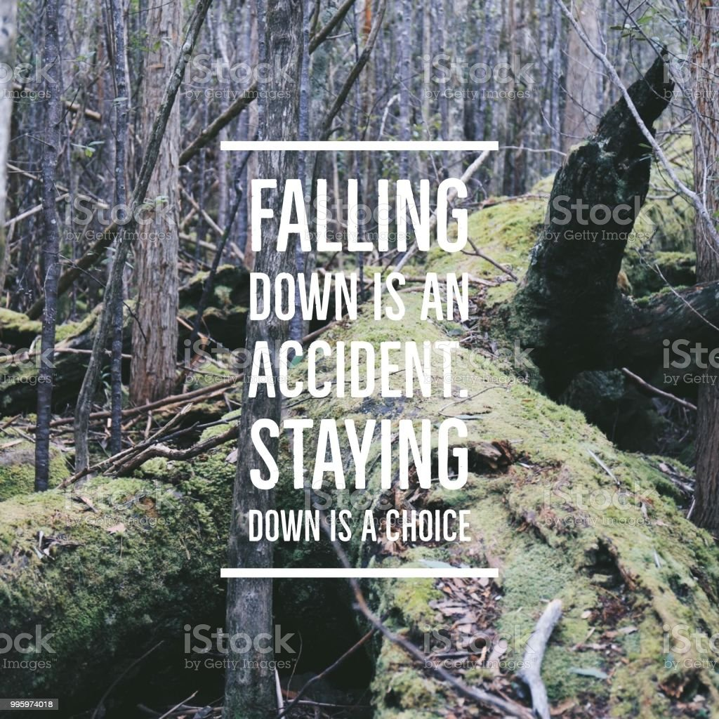 """Inspirational quote """"Falling down is an accident.Staying down is a choice""""on forest background with vintage filter royalty-free stock photo"""