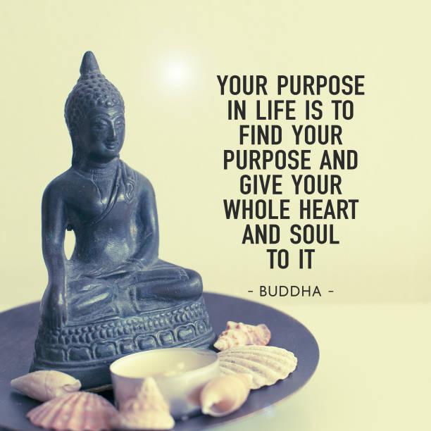Buddha Zitate Bilder Und Stockfotos Istock