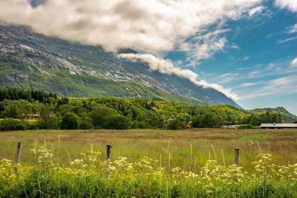 Inspirierende ländlichen Ackerland Landschaft mit üppigen grünen Feldern und Bergen – Foto