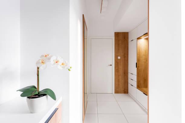 刺激的で居心地の良い玄関ホール - 玄関 ストックフォトと画像