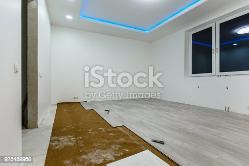 922081754 istock photo Installing light laminate floor with substrate under a laminate on white background 925489956