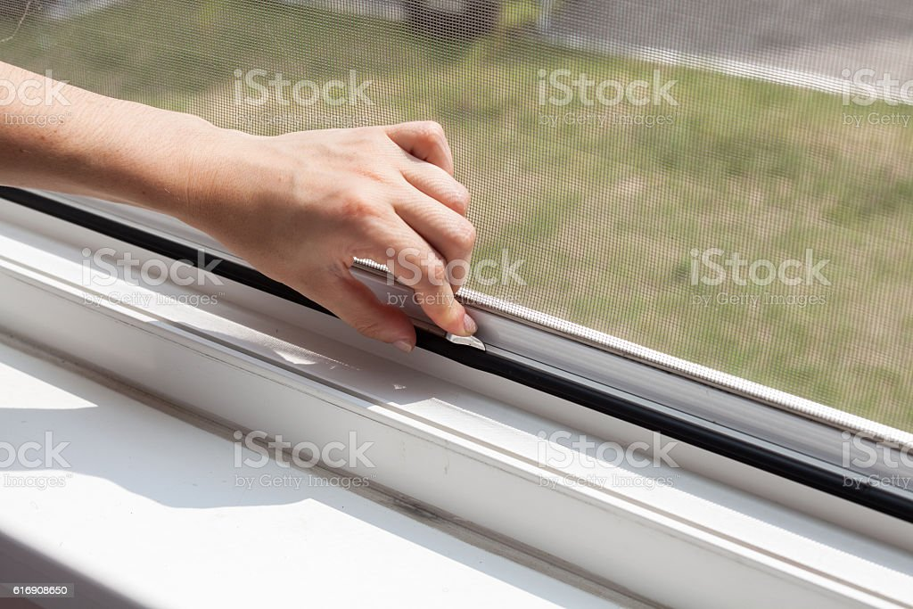 Installing mosquito nets for plastic windows stock photo