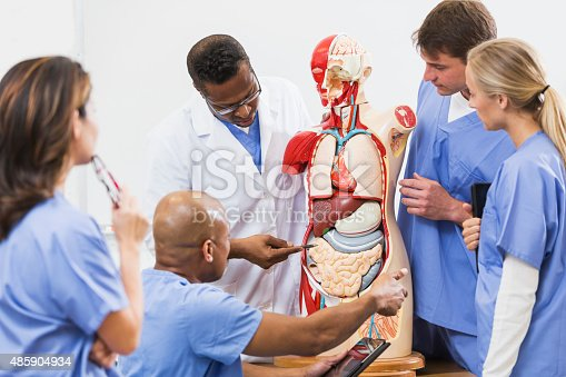 istock Instructor and students in medical school anatomy class 485904934
