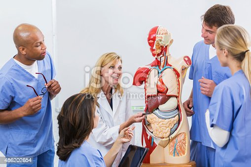 istock Instructor and students in medical school anatomy class 486202654